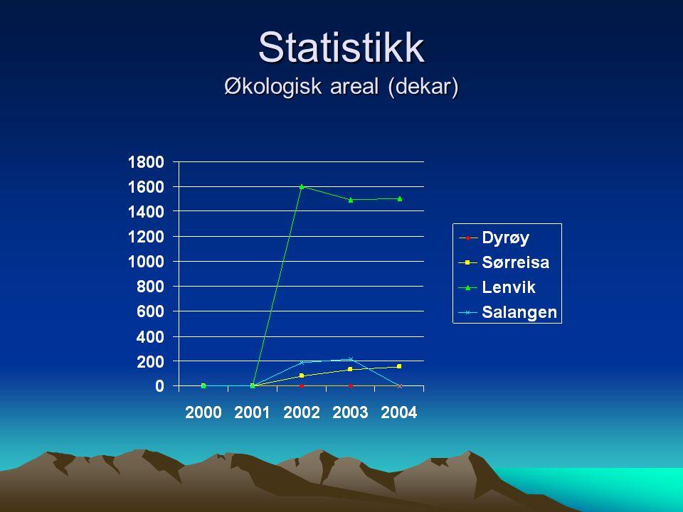 Statistikk Økologisk areal (dekar)