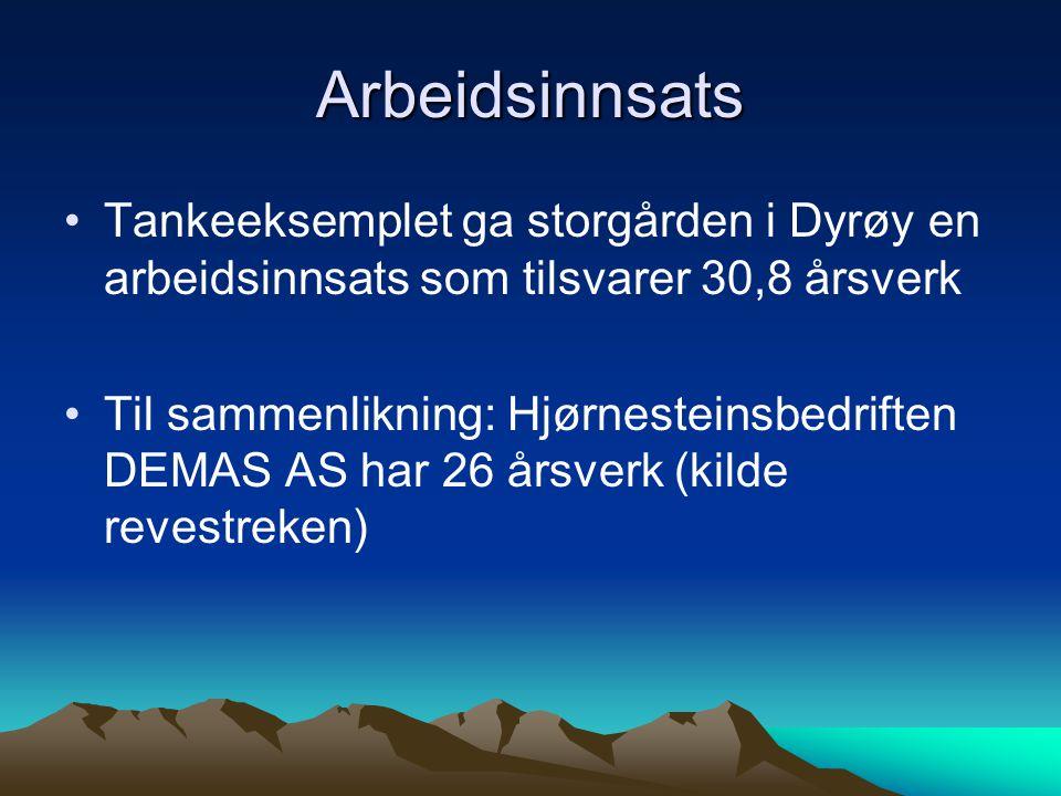 Arbeidsinnsats Tankeeksemplet ga storgården i Dyrøy en arbeidsinnsats som tilsvarer 30,8 årsverk Til sammenlikning: Hjørnesteinsbedriften DEMAS AS har
