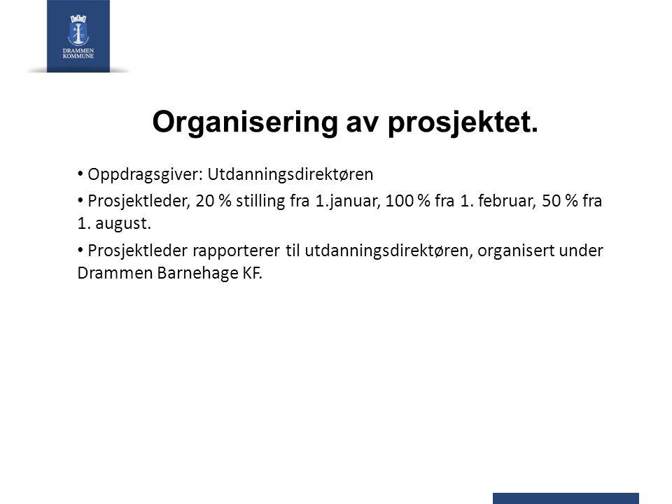 Organisering av prosjektet.