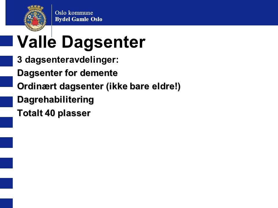 Oslo kommune Bydel Gamle Oslo Valle Dagsenter 3 dagsenteravdelinger: Dagsenter for demente Ordinært dagsenter (ikke bare eldre!) Dagrehabilitering Tot
