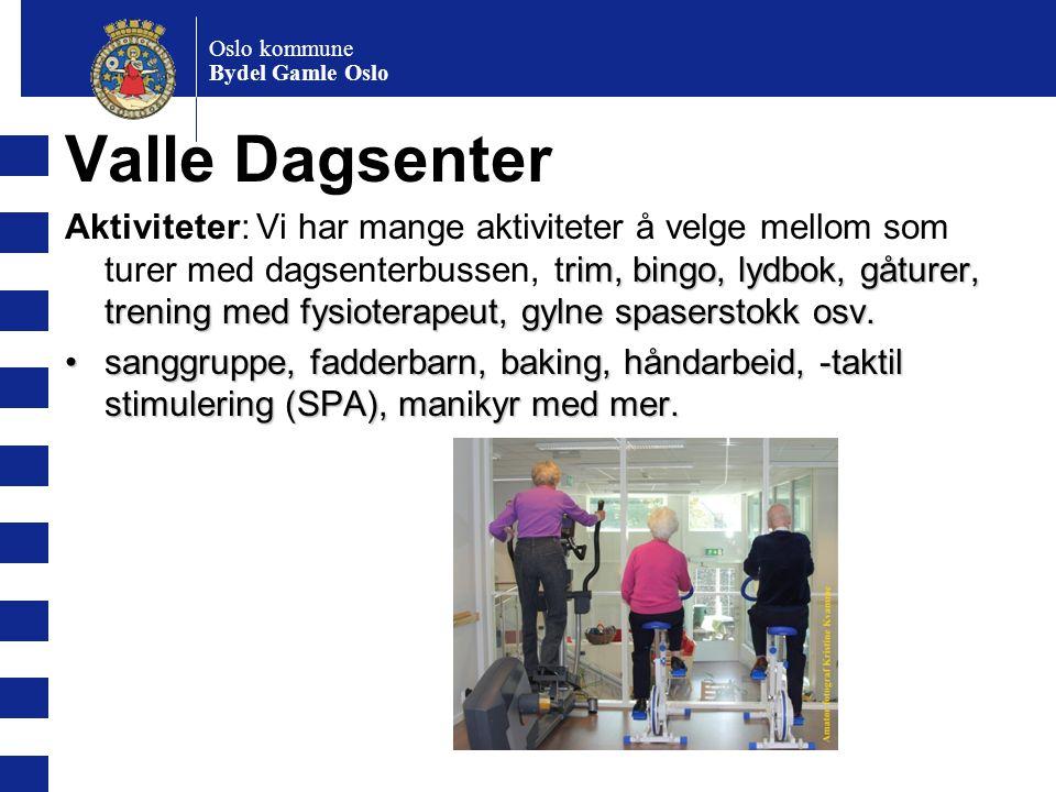 Oslo kommune Bydel Gamle Oslo Valle Dagsenter rim, bingo, lydbok, gåturer, trening med fysioterapeut, gylne spaserstokk osv. Aktiviteter: Vi har mange