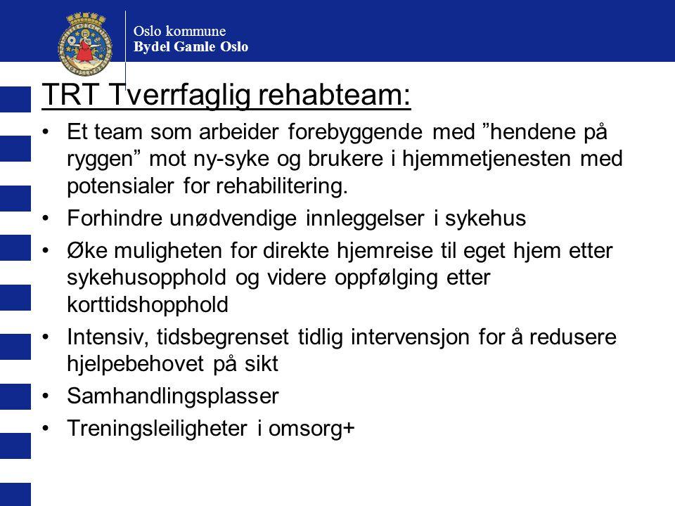 """Oslo kommune Bydel Gamle Oslo TRT Tverrfaglig rehabteam: Et team som arbeider forebyggende med """"hendene på ryggen"""" mot ny-syke og brukere i hjemmetjen"""