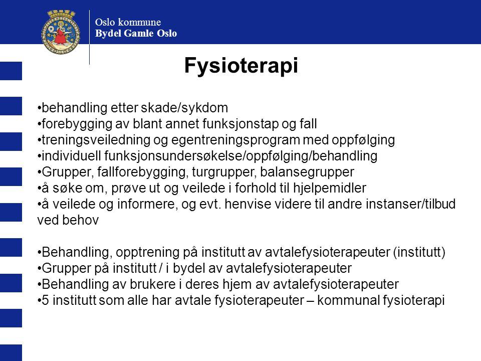 Oslo kommune Bydel Gamle Oslo Fysioterapi behandling etter skade/sykdom forebygging av blant annet funksjonstap og fall treningsveiledning og egentren