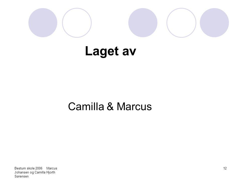 Bestum skole 2006 Marcus Johansen og Camilla Hjorth Sørensen 12 Laget av Camilla & Marcus