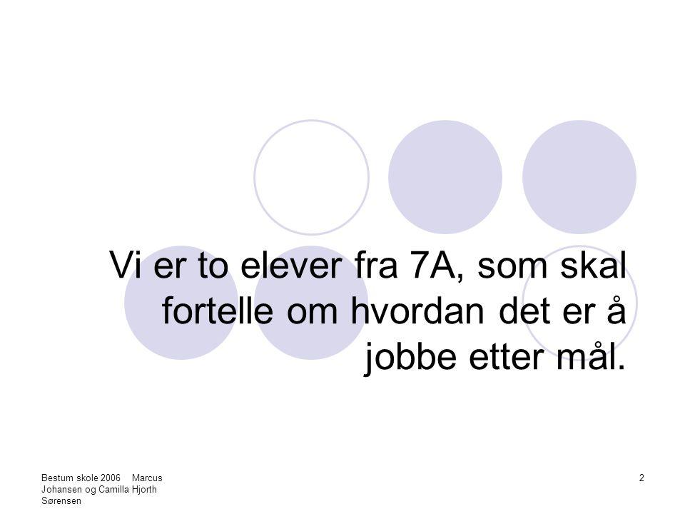 Bestum skole 2006 Marcus Johansen og Camilla Hjorth Sørensen 3 Hva vil si å jobbe etter mål.