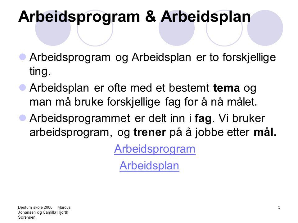 Bestum skole 2006 Marcus Johansen og Camilla Hjorth Sørensen 5 Arbeidsprogram & Arbeidsplan Arbeidsprogram og Arbeidsplan er to forskjellige ting. Arb