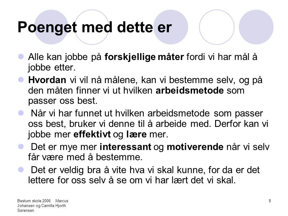Bestum skole 2006 Marcus Johansen og Camilla Hjorth Sørensen 9 Verktøy Verktøy er det som vi kan bruke for at arbeidet skal gå mer effektivt og for at vi lærer lettere.