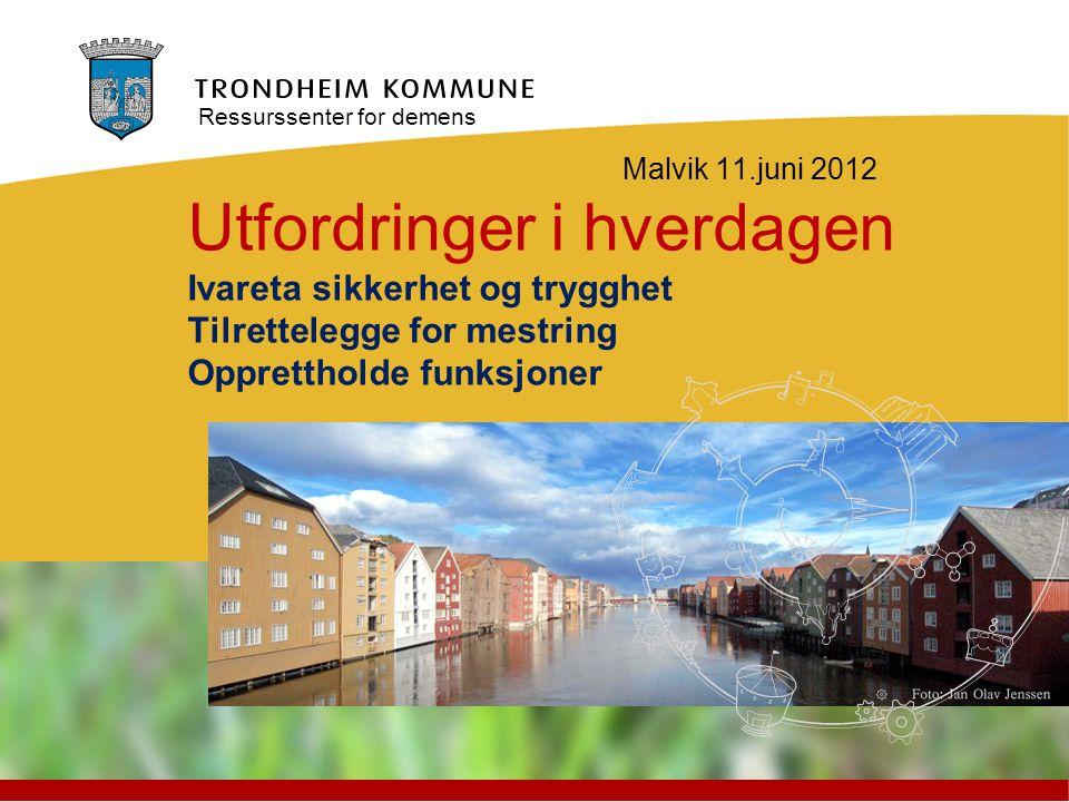 Malvik 11.juni 2012 Utfordringer i hverdagen Ivareta sikkerhet og trygghet Tilrettelegge for mestring Opprettholde funksjoner Ressurssenter for demens