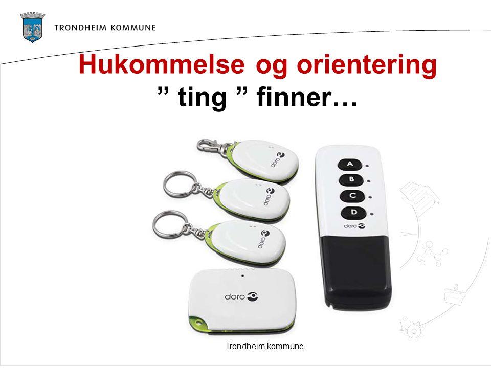 "Hukommelse og orientering "" ting "" finner… Trondheim kommune"