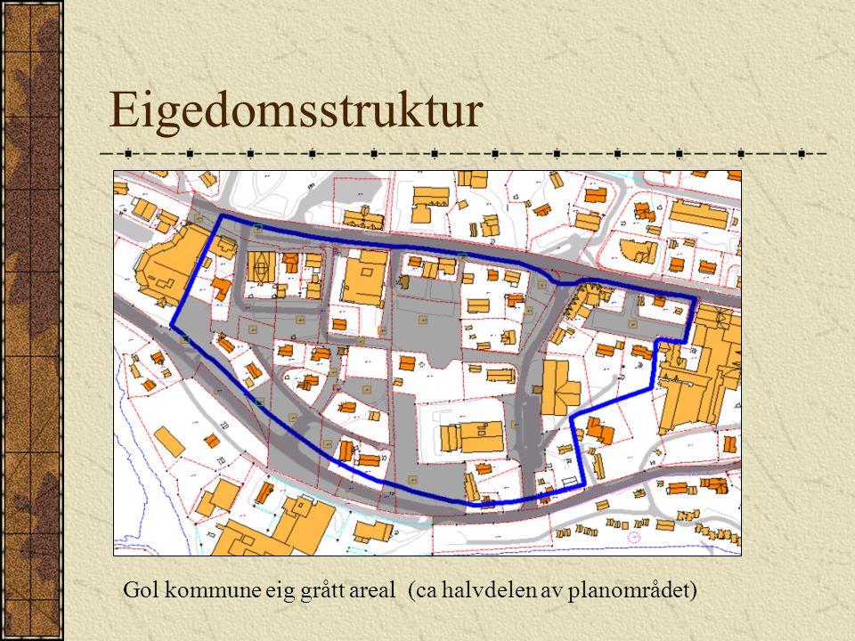 Eigedomsstruktur Gol kommune eig grått areal (ca halvdelen av planområdet)