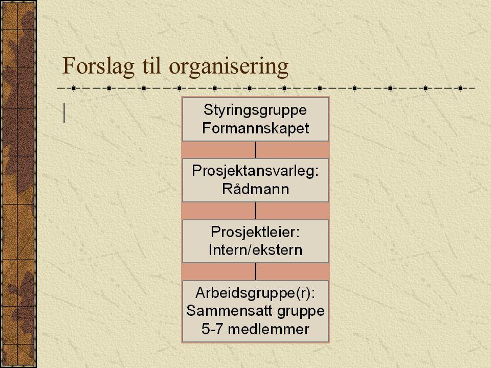 Forslag til organisering |