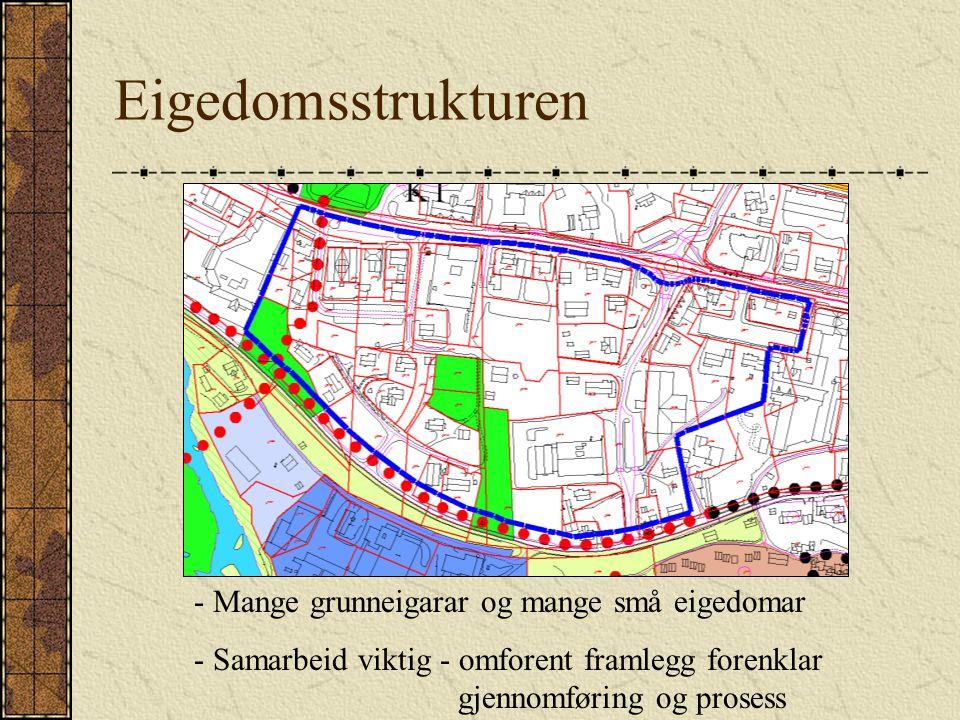 Eigedomsstrukturen - Mange grunneigarar og mange små eigedomar - Samarbeid viktig - omforent framlegg forenklar gjennomføring og prosess