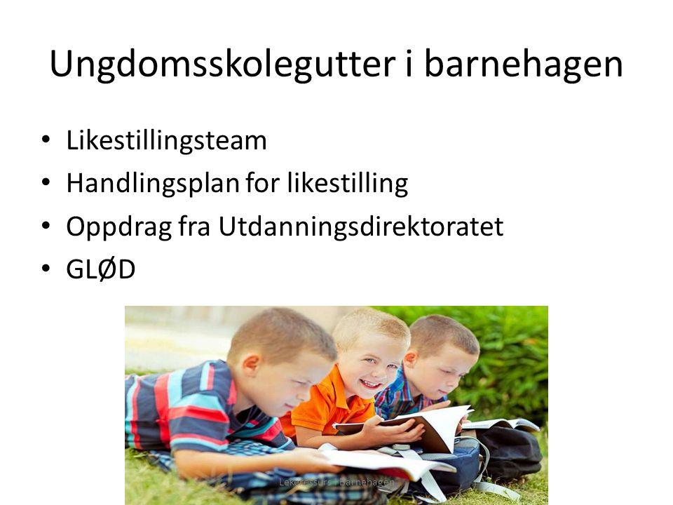 Ungdomsskolegutter i barnehagen Likestillingsteam Handlingsplan for likestilling Oppdrag fra Utdanningsdirektoratet GLØD Lekeressurs i Barnehagen