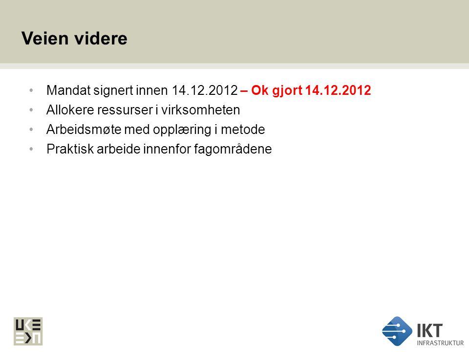 Veien videre Mandat signert innen 14.12.2012 – Ok gjort 14.12.2012 Allokere ressurser i virksomheten Arbeidsmøte med opplæring i metode Praktisk arbei