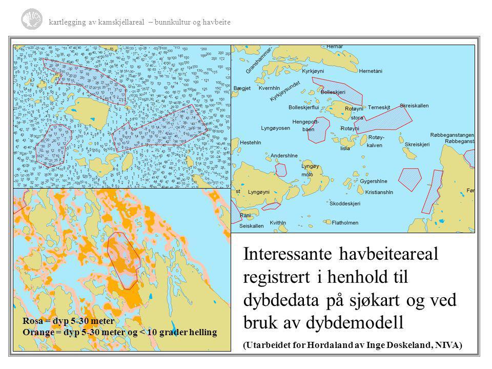 Rosa = dyp 5-30 meter Orange = dyp 5-30 meter og < 10 grader helling Interessante havbeiteareal registrert i henhold til dybdedata på sjøkart og ved b