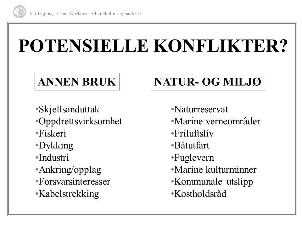 POTENSIELLE KONFLIKTER? kartlegging av kamskjellareal – bunnkultur og havbeite Skjellsanduttak Oppdrettsvirksomhet Fiskeri Dykking Industri Ankring/op