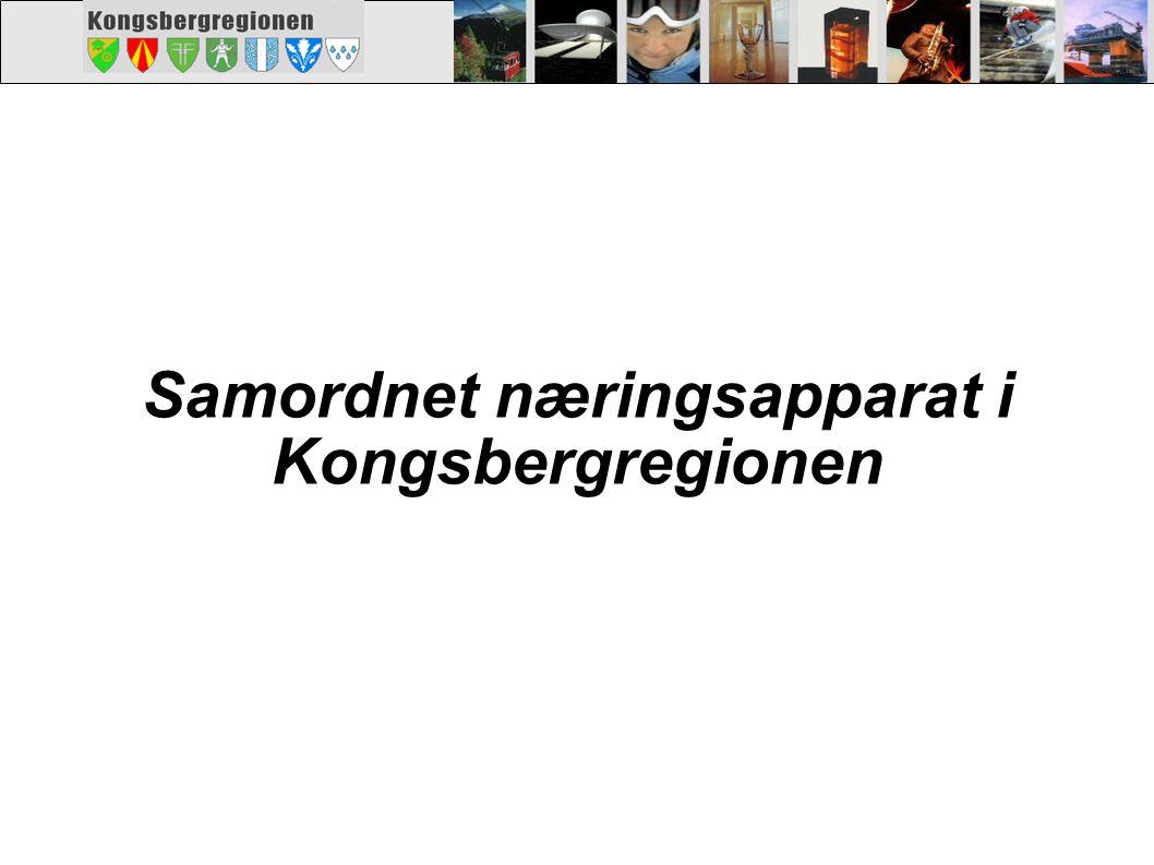 Kongsberg regionens næringsutviklingsapparat (mulig modell) Lokalt næringsapp.: ( kundeveiledning ) Rjukan Nutv.