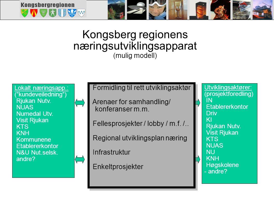"""Kongsberg regionens næringsutviklingsapparat (mulig modell) Lokalt næringsapp.: (""""kundeveiledning"""") Rjukan Nutv. NUAS Numedal Utv. Visit Rjukan KTS KN"""