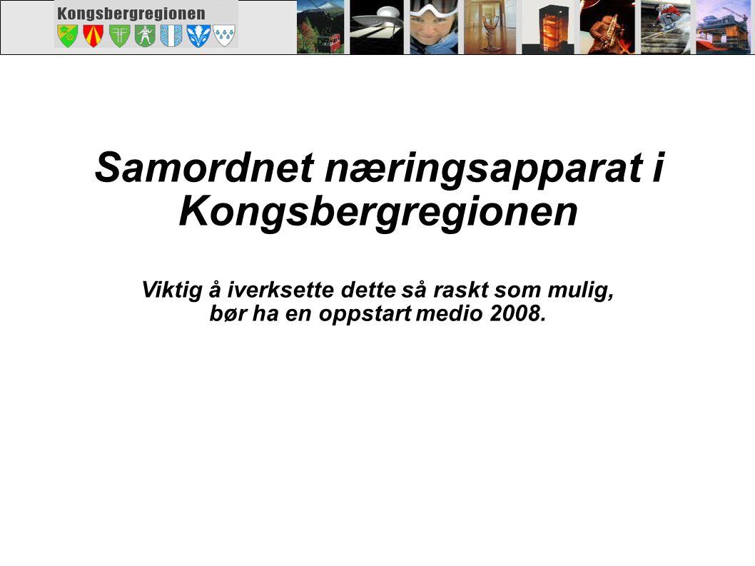 Samordnet næringsapparat i Kongsbergregionen Viktig å iverksette dette så raskt som mulig, bør ha en oppstart medio 2008.