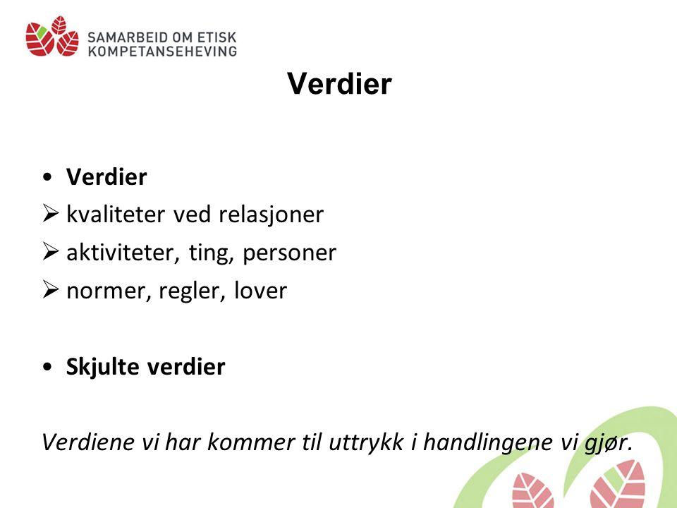 Summegruppe Hvilke verdier står på spill i her? -for kvinnen -for pleieren Foto:Elin Kløvstad.