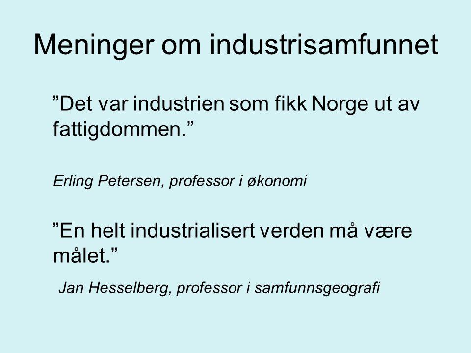 """Meninger om industrisamfunnet """"Det var industrien som fikk Norge ut av fattigdommen."""" Erling Petersen, professor i økonomi """"En helt industrialisert ve"""