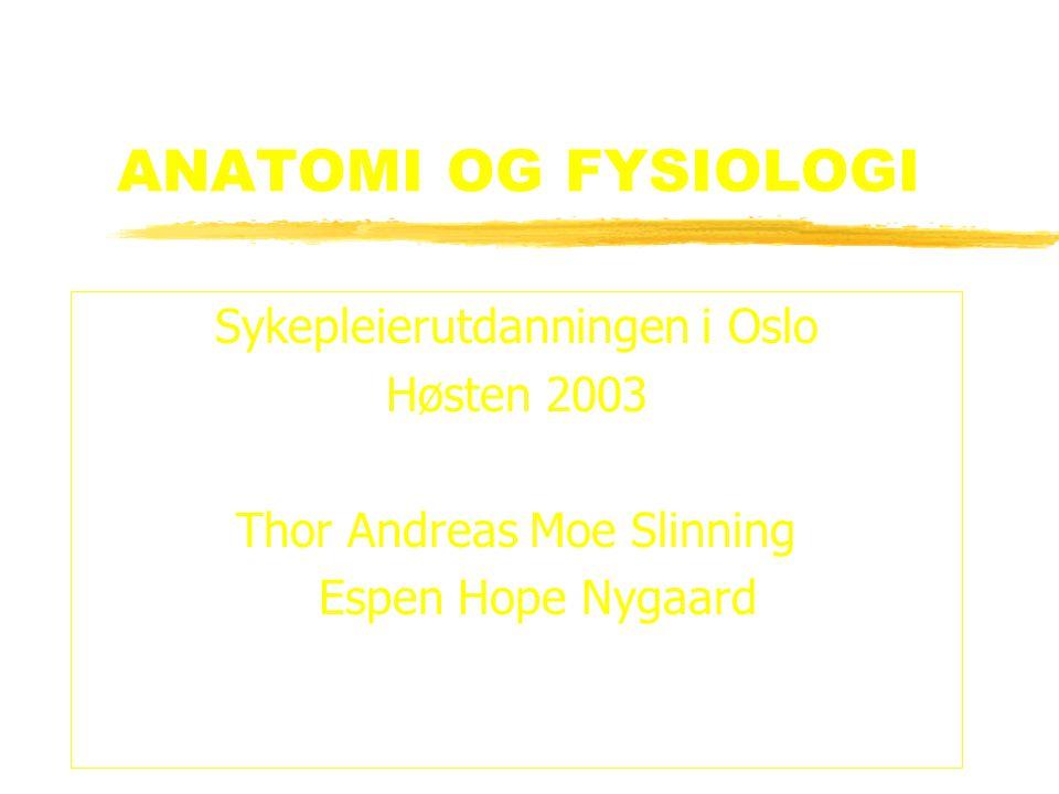 ANATOMI OG FYSIOLOGI Sykepleierutdanningen i Oslo Høsten 2003 Thor Andreas Moe Slinning Espen Hope Nygaard