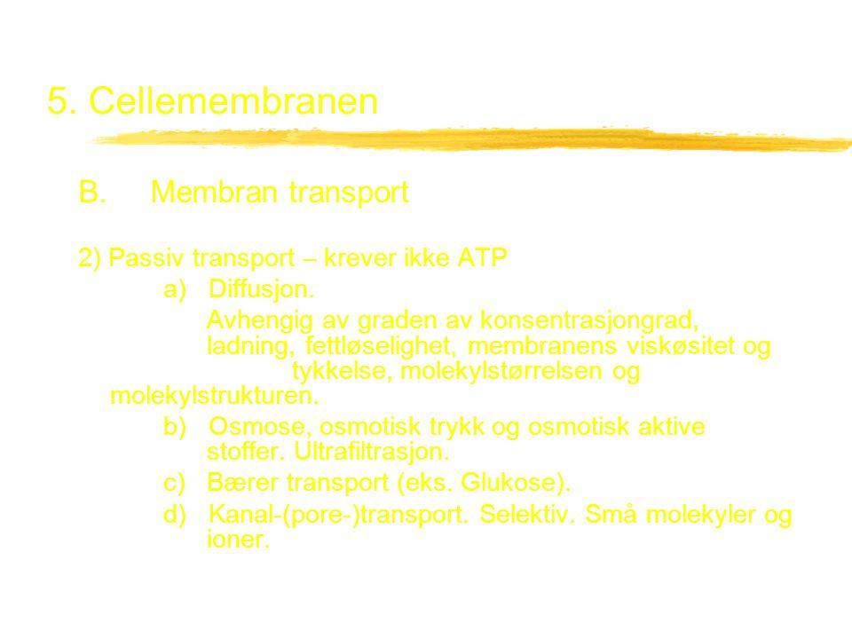 5. Cellemembranen B. Membran transport 2) Passiv transport – krever ikke ATP a) Diffusjon. Avhengig av graden av konsentrasjongrad, ladning, fettløsel