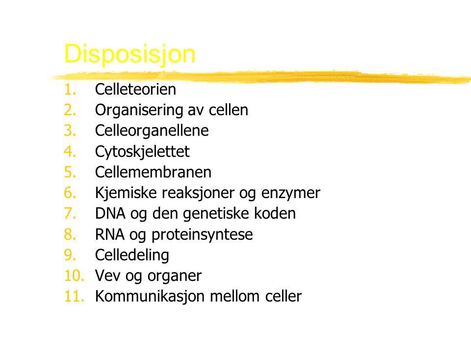 5.Cellemembranen B.