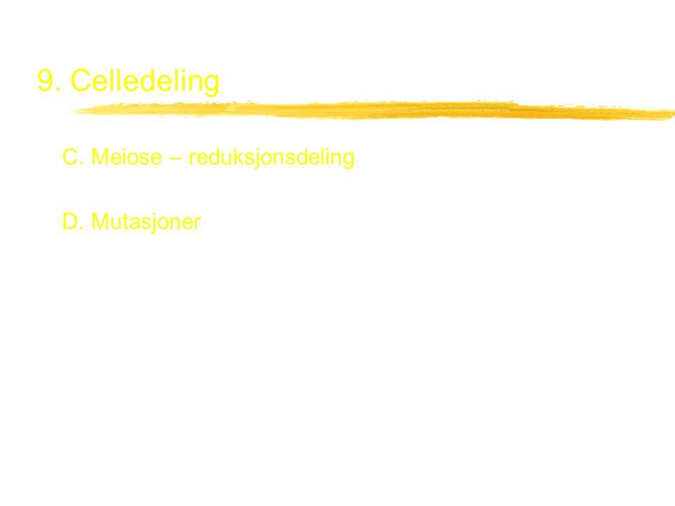 9. Celledeling C. Meiose – reduksjonsdeling D. Mutasjoner