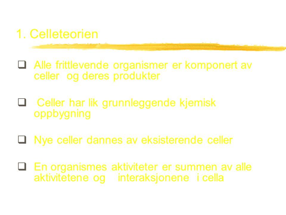 2.Organisering av cellen A. Cellemembran B.