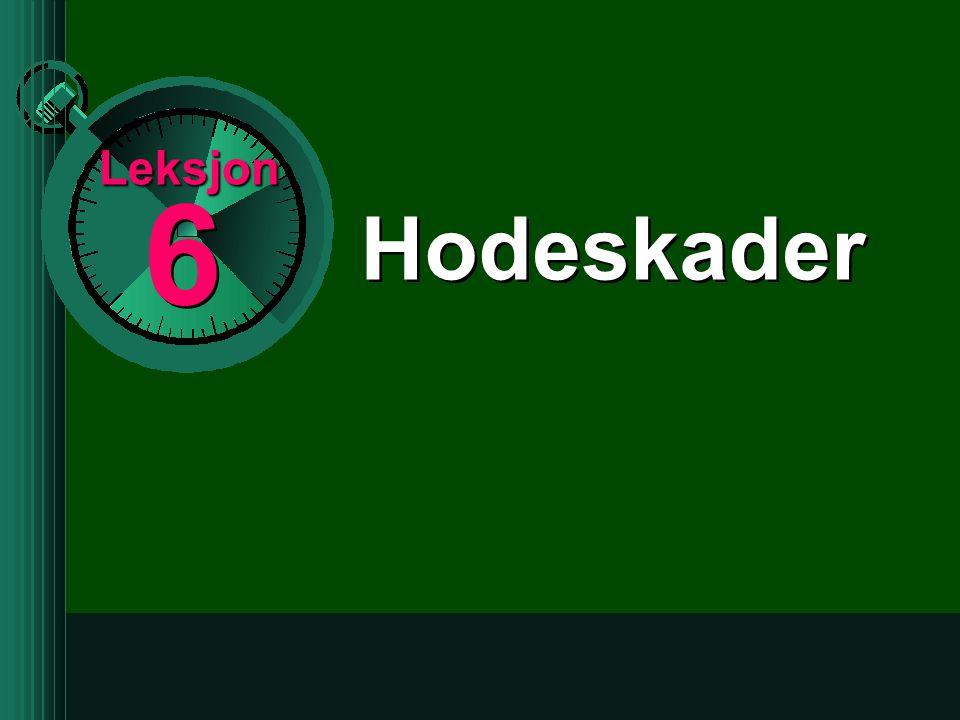 6 6 Leksjon Hodeskader