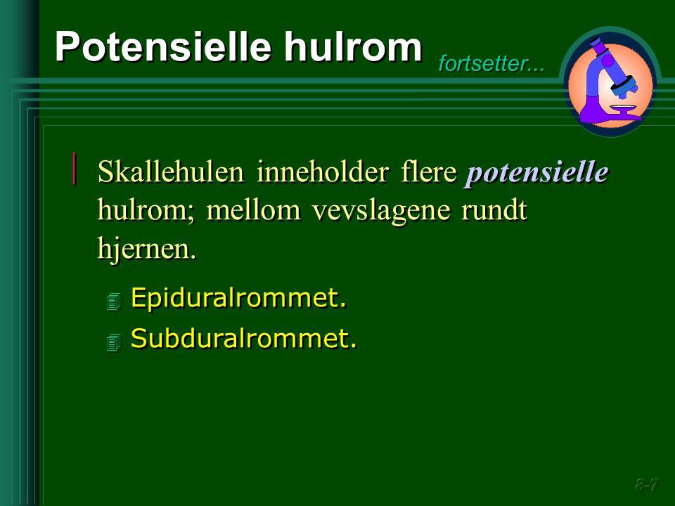 Potensielle hulrom  Skallehulen inneholder flere potensielle hulrom; mellom vevslagene rundt hjernen. 4 Epiduralrommet. 4 Subduralrommet.  Skallehul