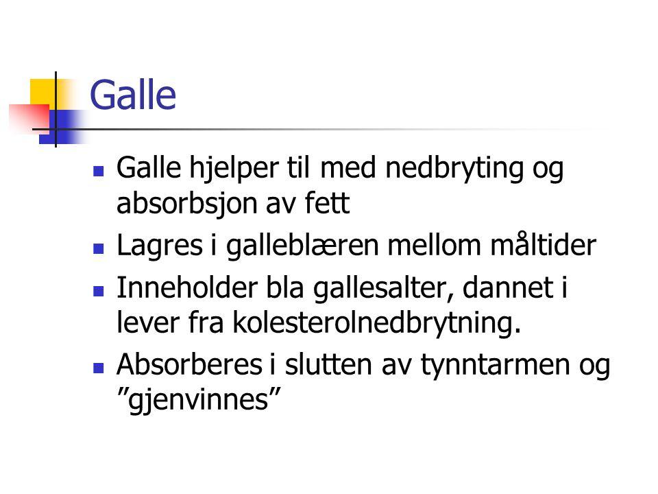 Galle Galle hjelper til med nedbryting og absorbsjon av fett Lagres i galleblæren mellom måltider Inneholder bla gallesalter, dannet i lever fra koles