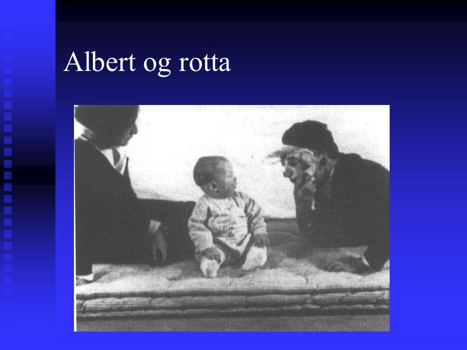 Albert og rotta Syn av rotteGråt Betinget stimulus Betinget respons