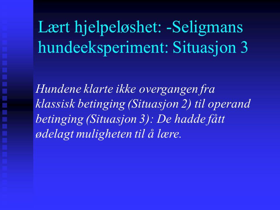 Lært hjelpeløshet: -Seligmans hundeeksperiment: Situasjon 3 -Resultatene fra Seligmans første hundeforsøk er senere replisert ved andre dyreforsøk. -