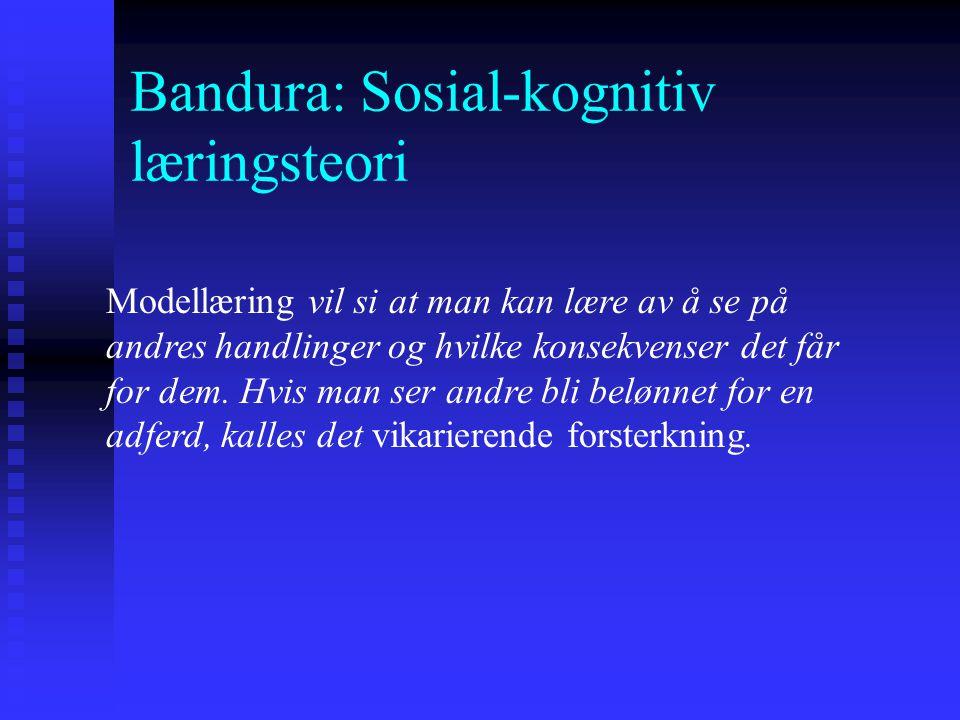 Bandura: Sosial-kognitiv læringsteori