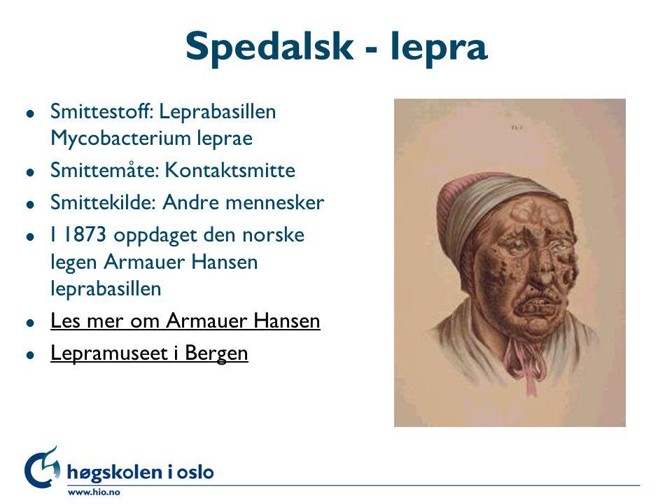Spedalsk - lepra l Smittestoff: Leprabasillen Mycobacterium leprae l Smittemåte: Kontaktsmitte l Smittekilde: Andre mennesker l I 1873 oppdaget den no
