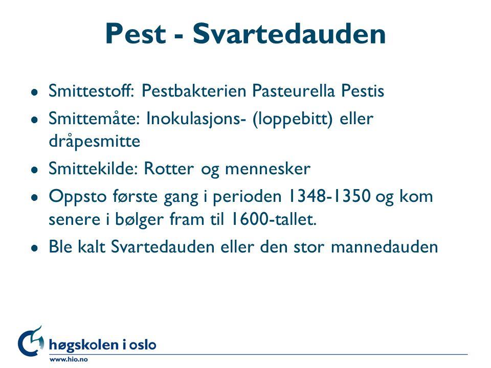 Pest - Svartedauden l Smittestoff: Pestbakterien Pasteurella Pestis l Smittemåte: Inokulasjons- (loppebitt) eller dråpesmitte l Smittekilde: Rotter og