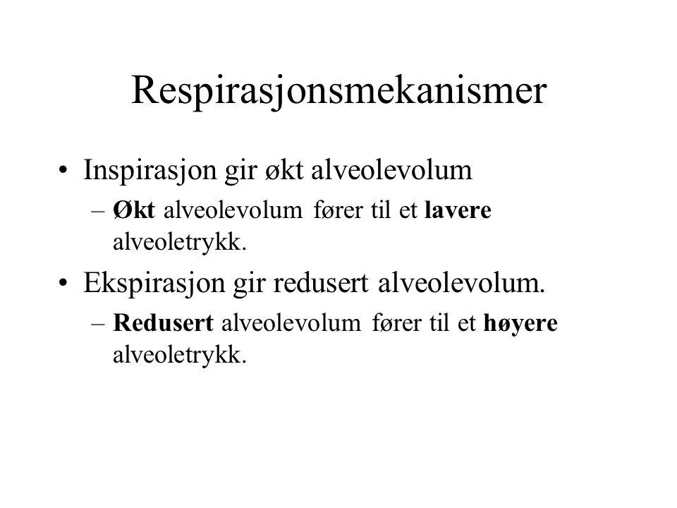 Respirasjonsmekanismer Inspirasjon gir økt alveolevolum –Økt alveolevolum fører til et lavere alveoletrykk. Ekspirasjon gir redusert alveolevolum. –Re