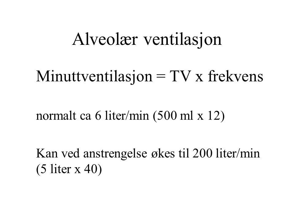 Alveolær ventilasjon Minuttventilasjon = TV x frekvens normalt ca 6 liter/min (500 ml x 12) Kan ved anstrengelse økes til 200 liter/min (5 liter x 40)