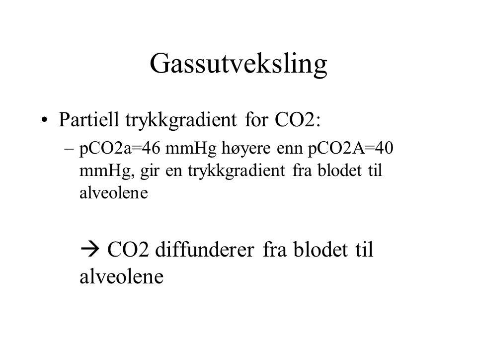 Gassutveksling Partiell trykkgradient for CO2: –pCO2a=46 mmHg høyere enn pCO2A=40 mmHg, gir en trykkgradient fra blodet til alveolene  CO2 diffundere