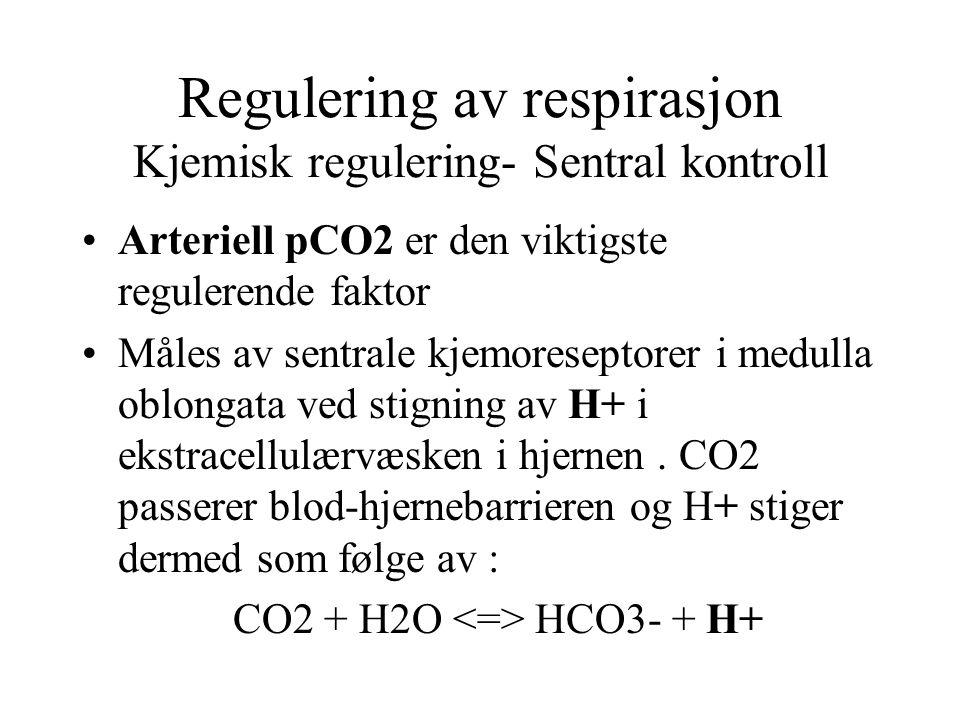 Regulering av respirasjon Kjemisk regulering- Sentral kontroll Arteriell pCO2 er den viktigste regulerende faktor Måles av sentrale kjemoreseptorer i