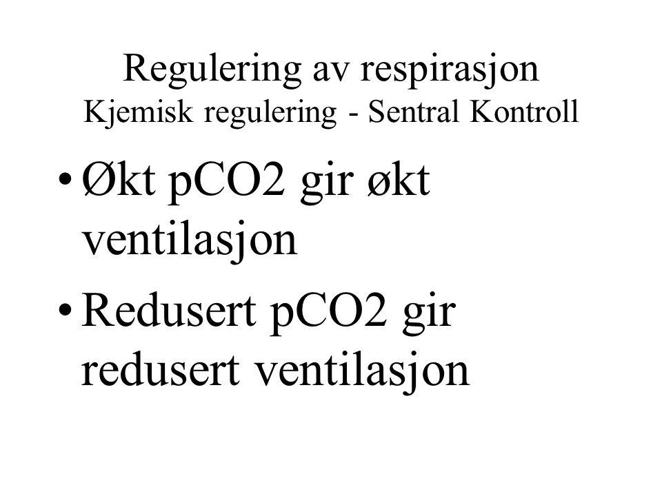 Regulering av respirasjon Kjemisk regulering - Sentral Kontroll Økt pCO2 gir økt ventilasjon Redusert pCO2 gir redusert ventilasjon