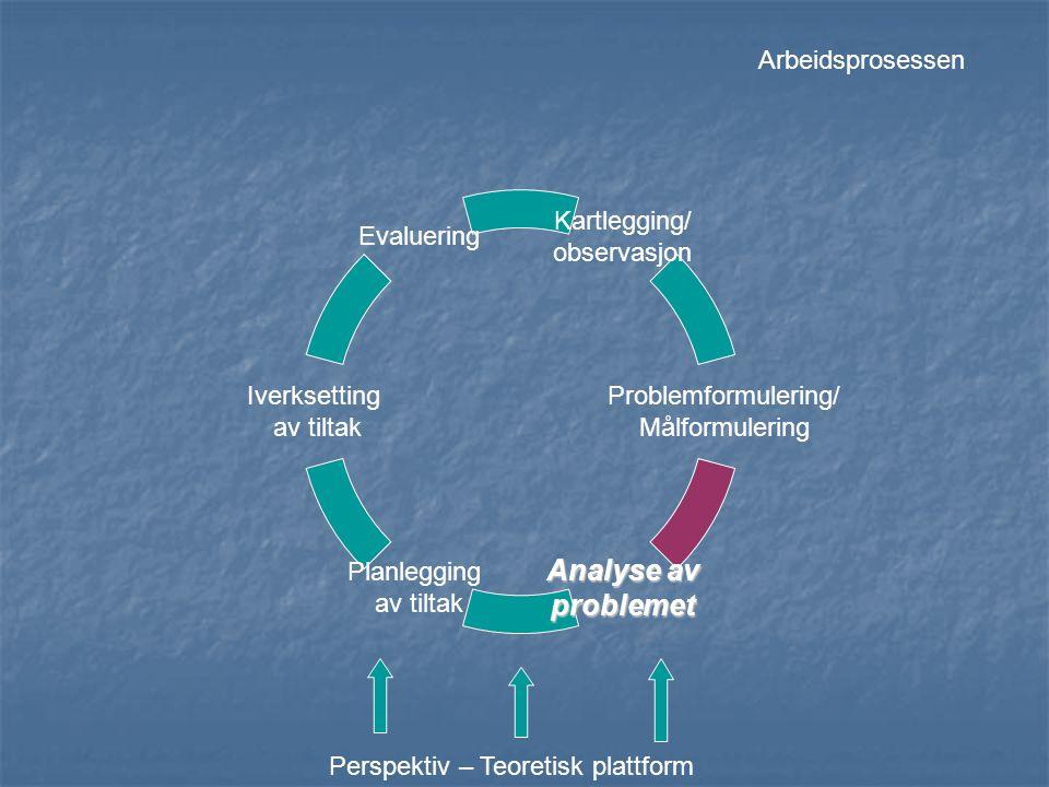 Kartlegging/ observasjon Problemformulering/ Målformulering Analyse av problemet Planlegging av tiltak Iverksetting av tiltak Evaluering Perspektiv –