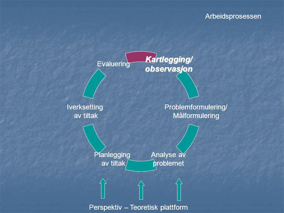 Likner på målstyringsopplegg (New Public Management – NPM) - et styringsverktøy for ledelsen/administrasjonen.