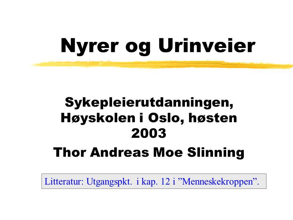 """Nyrer og Urinveier Sykepleierutdanningen, Høyskolen i Oslo, høsten 2003 Thor Andreas Moe Slinning Litteratur: Utgangspkt. i kap. 12 i """"Menneskekroppen"""