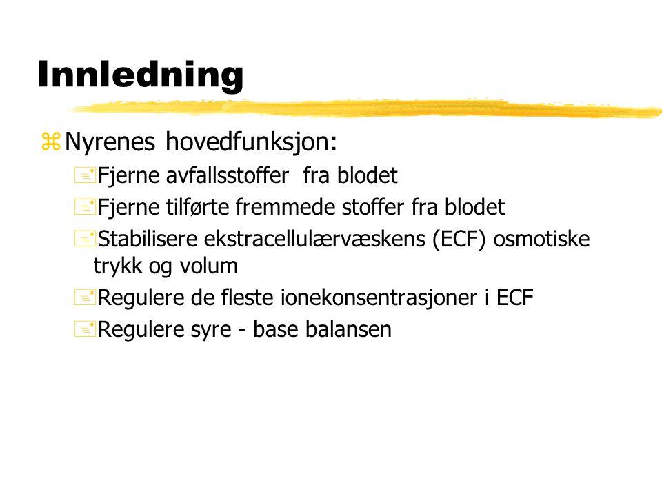 Innledning zNyrenes hovedfunksjon: +Fjerne avfallsstoffer fra blodet +Fjerne tilførte fremmede stoffer fra blodet +Stabilisere ekstracellulærvæskens (