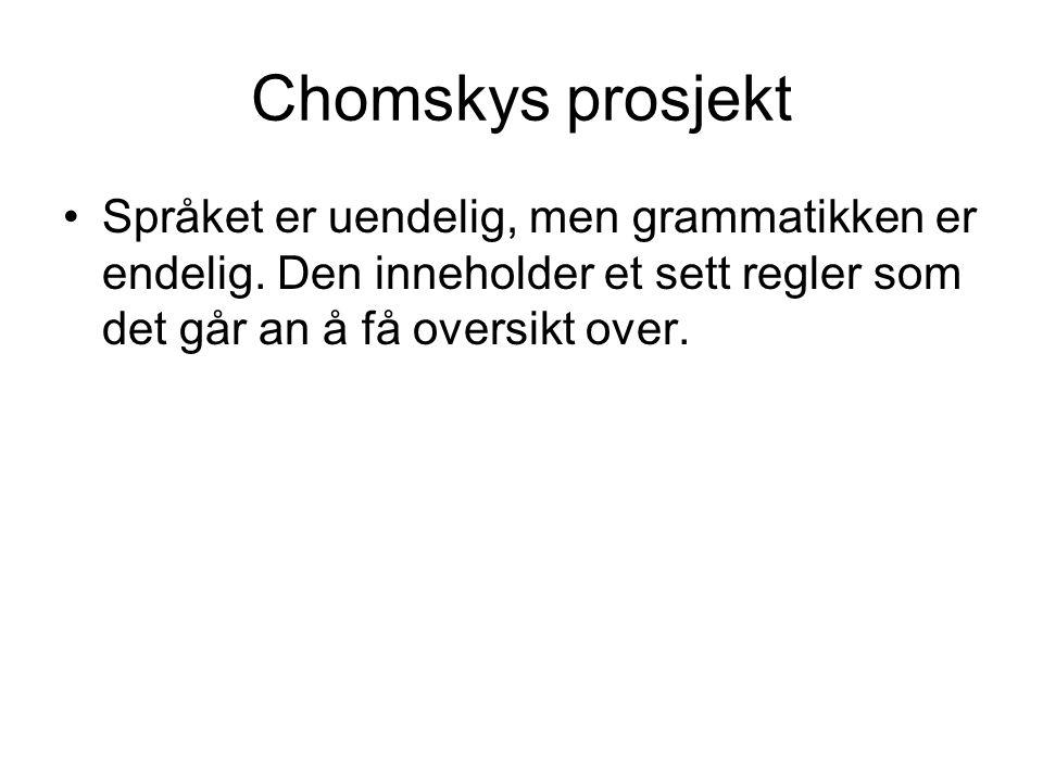 Chomskys prosjekt Språket er uendelig, men grammatikken er endelig. Den inneholder et sett regler som det går an å få oversikt over.