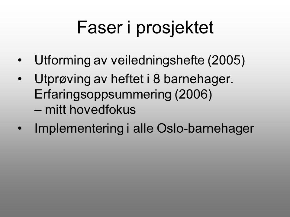 Faser i prosjektet Utforming av veiledningshefte (2005) Utprøving av heftet i 8 barnehager. Erfaringsoppsummering (2006) – mitt hovedfokus Implementer