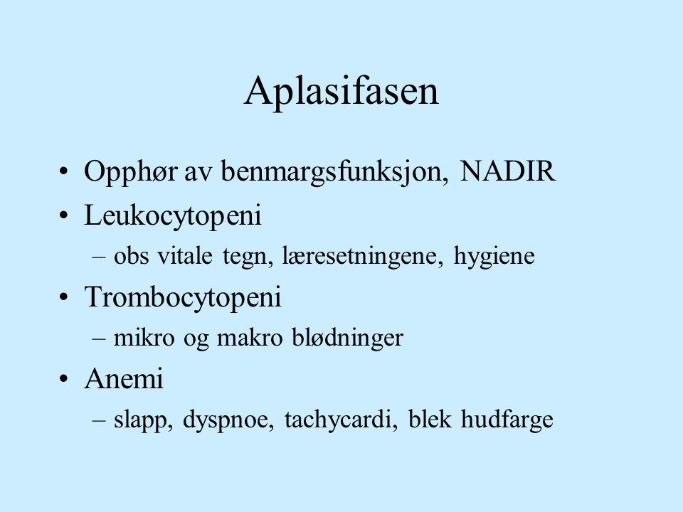 Aplasifasen Opphør av benmargsfunksjon, NADIR Leukocytopeni –obs vitale tegn, læresetningene, hygiene Trombocytopeni –mikro og makro blødninger Anemi